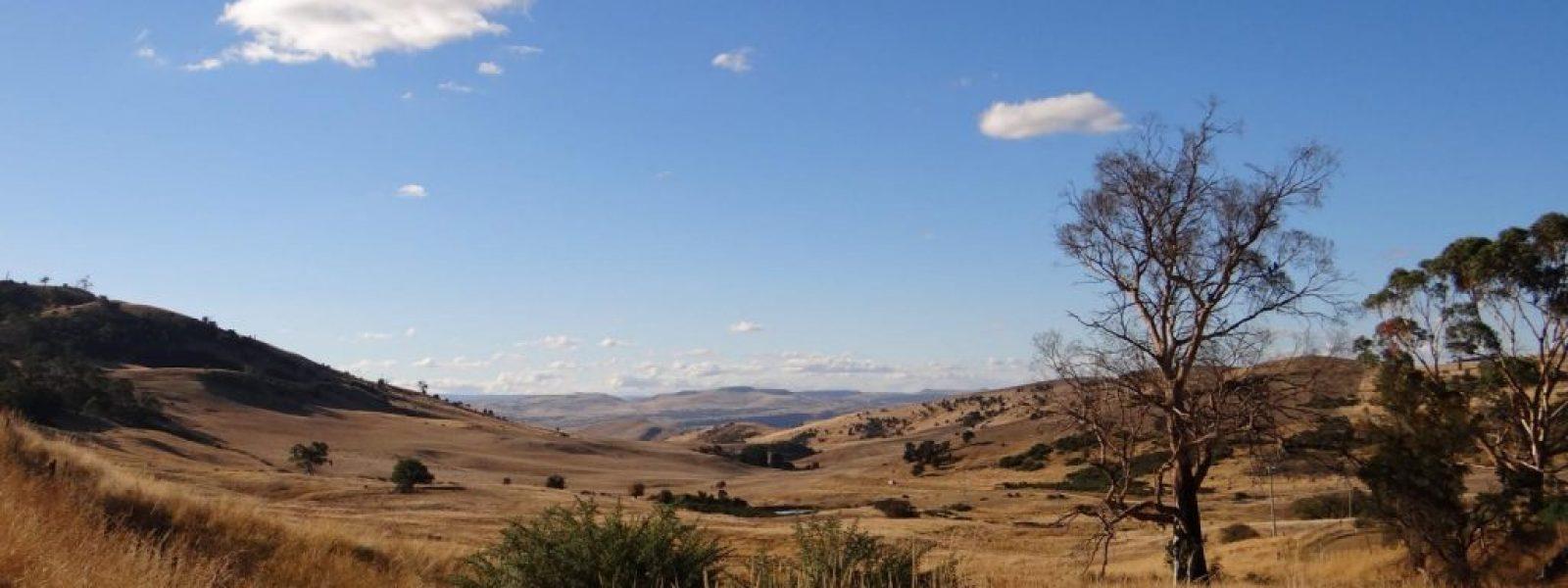 Tasmanien entdecken